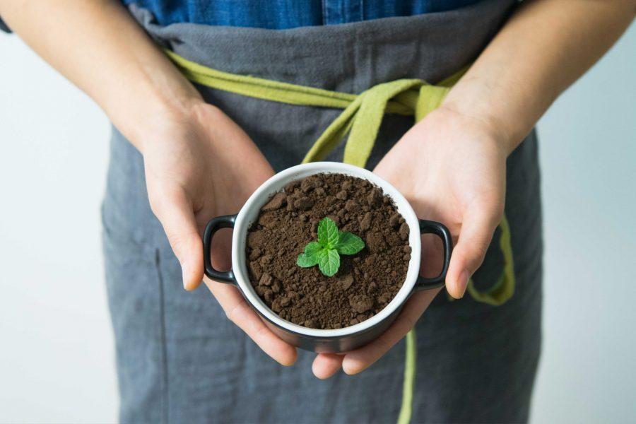 L'Slow Food una forma d'entendre la vida